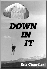 Down In It Book Cover